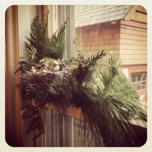 Foyer window. Cindy also made this cozy little birdy perch.