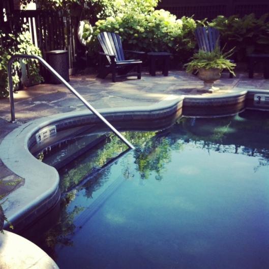 Adelphi Pool 2